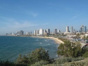 Jaffa (8)
